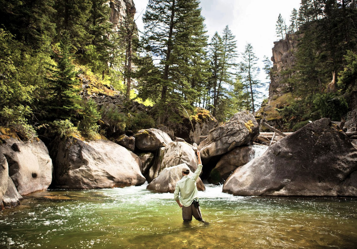 Little Bighorn Wyoming Montana Fly Fishing Guide Service Dry Fly Trout