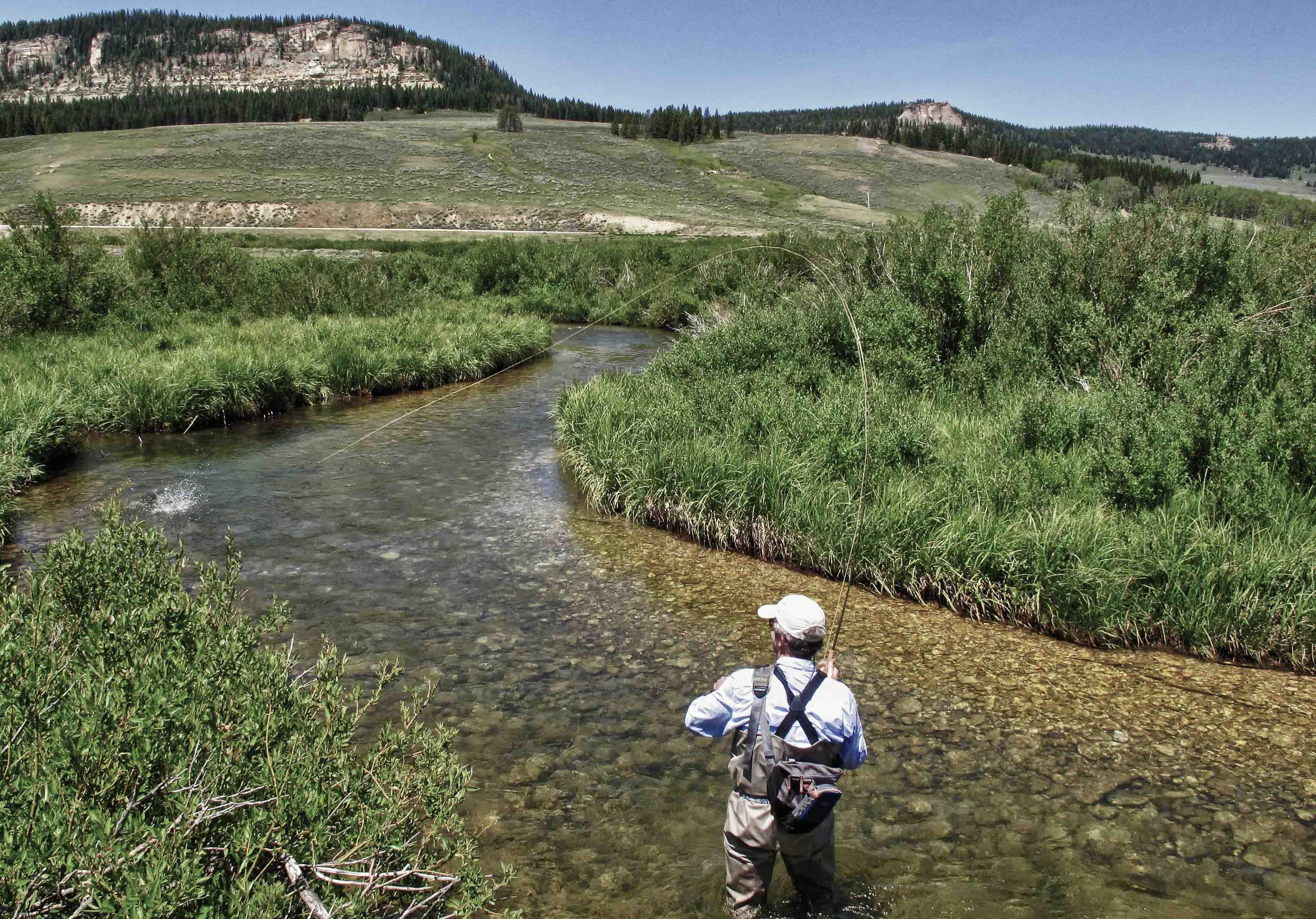 Tongue River Wyoming North Fork Dry Fly Shop Guide Service Bighorns