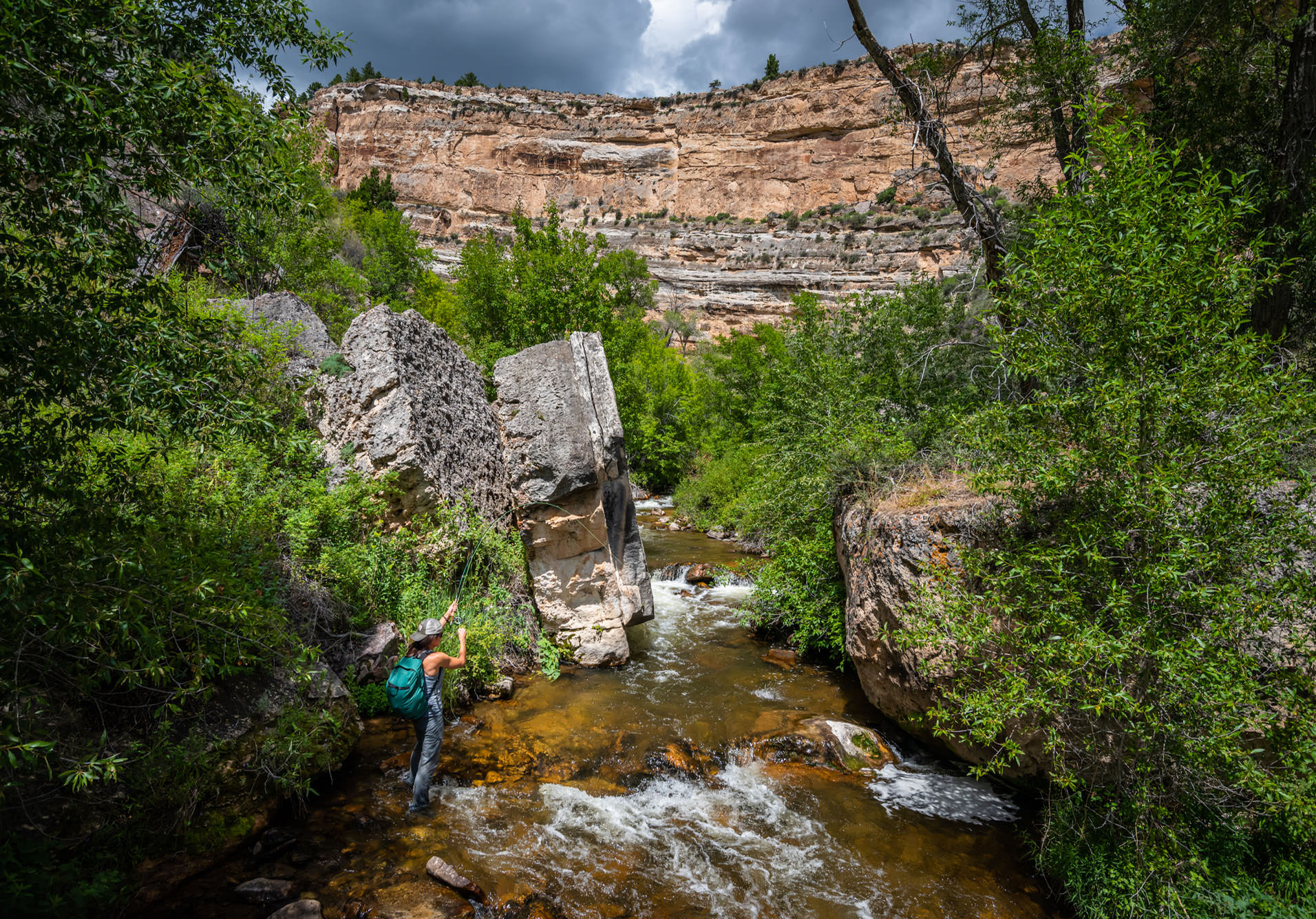 Dry Fly Fishing Guide Wyoming Outfitter Trout Brown Rainbow Brook Brookie